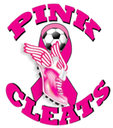 Beach Soccer  for Pink Cleats Coaches against Cancer
